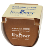 Israel Forever Recycled Ecological Planter