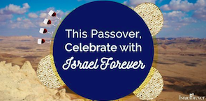 Israel At Your Seder: Celebrating Our Journey to Freedom