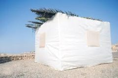 Sukkot in Israel: Did You Know...