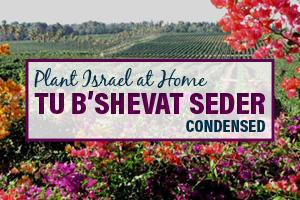 The Plant Israel at Home™ Tu B'Shevat Seder [Condensed Version]
