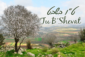 Your Israel Connection For Tu B'Shevat