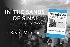 Reading Israel: In the Sands of Sinai by Dr. Itzhak Brook