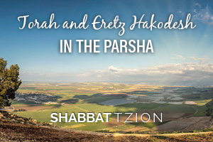 Shabbat Tzion