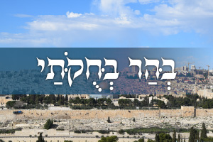 The Parsha, the Process and the Promised Land: Parshat Behar-Bechukotai